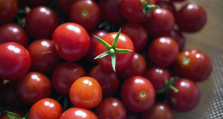 Sauce tomate de quartier