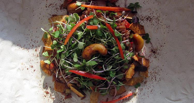 Salade énergie de riz rouge aux noix et aux micropousses